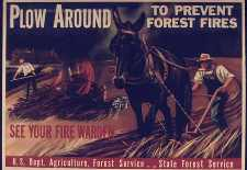 Forest-Fire-poster--for-enews 3